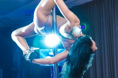 pokaz-pole-dance-impreza-elitemusic (16)