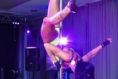 pokaz-pole-dance-impreza-elitemusic (21)