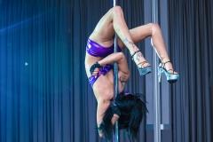 pokaz-pole-dance-impreza-elitemusic (7)
