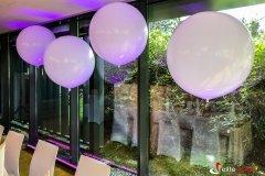 Dekoracje-balonowe-na-wesele-elite-music (5)