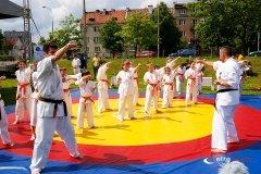 Pokaz sztuki walki lokalnej szkółki kung-fu