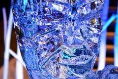 Rzeźba lodowa na imprezę - głowa z bliska