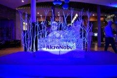Rzeźba lodowa dla firmy Akzo Nobel